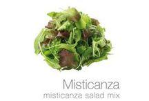 green varieties - verdi varietà / different ideas and uses of salads varieties, idee e utilizzi diversi delle varietà di insalate