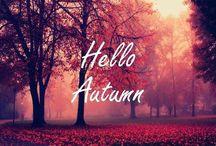 Autum / Herfst