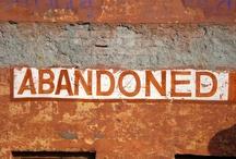 Abandoned Beauty / OK...so it's not ALL beautiful :) / by Maryann