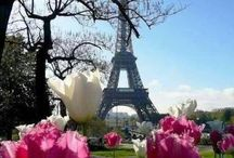 France mon amour...