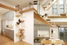 Diseño de interiores para gatos