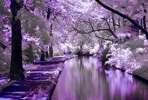 ~ Beautiful nature photos ~