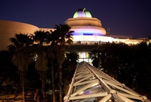 OSC The Venue / The Orlando Science Center building for your meetings, special events, and weddings.