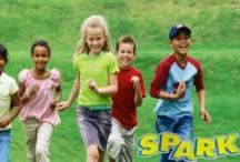 """After School Physical Activity Program  / The SPARK After School (AS) Physical Activity Program began in 1995 as part of an effort to take lessons learned from the successful SPARK PE program and apply them to """"out of PE"""" settings. The four components necessary for successful promotions of Physical Activity: Curriculum, Training, Equipment, and Follow-up Support - See more at: http://www.sparkpe.org/after-school/#sthash.7ITrFHd1.dpuf"""