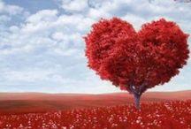 Amore / Qui sono raccolti tutti i link ai miei articoli che trattano di amore e sentimenti, spero siano di vostro gradimento.