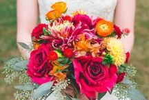 Bright and bold / by Bettie Rose Flowers