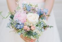 Jemma & Mike | August / Pretty pastels, loves roses, hydrangeas and gypsophila / by Bettie Rose Flowers