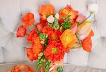 Awesome Orange / Orange inspiration for your wedding flowers / by Bettie Rose Flowers
