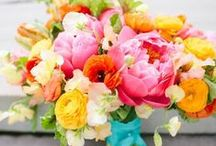 Orange, Pink and Turquoise / Fabulous bright colour combinations for your wedding flowers.  / by Bettie Rose Flowers
