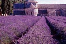 França Provença France Provence / Viagem