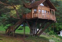 Treehouses / One day...