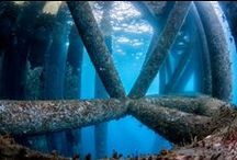 Famous Dive Sites in the United States / Famous Dive Sites