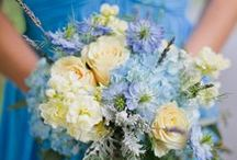 Brilliant Blue / Inspiration for a blue themed wedding.  / by Bettie Rose Flowers