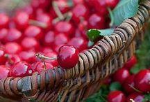 Groselha Red Currant groseille etiquetas labels