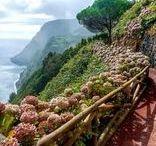 Açores Portugal islands / natureza ilhas vulcão lagoa nature islands vulcans lagoons