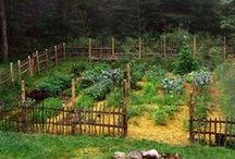 garden / all the stuff The Gardener will do for me