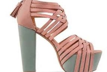 For the shoe lover / This is all about shoes old and new but great all the same.