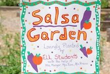 Garden Classroom / La Escuelita Arcoiris has recently begun teaching our students through hands-on work in our small garden. What could be better than spending time in the sunshine, fosterin a love of vegetables?!