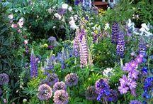 ·gardening·