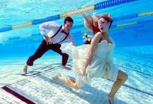 Pool Art & Photography / Life through an underwater lens.