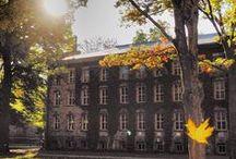 Princeton University / University