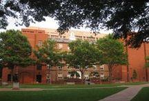 George Washington University / University