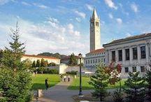 University of California-Berkeley / University