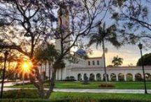 University of San Diego / University