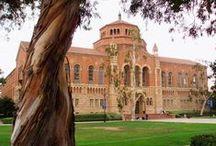 University of California -Los Angeles / University