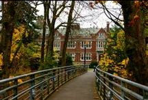 Reed College / College
