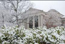 Davidson College / College