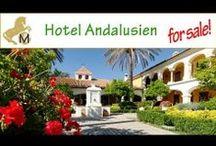 Spanien Immobilien Real Estate / hier zeige ich Ihnen eine Selektion unserer Immobilienangebote aus Spanien