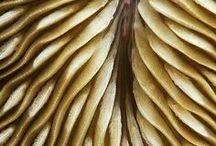 textile# textures# patterns