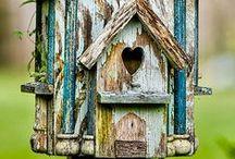 Házak / Igazi otthonok,melyeket apró méretük és kedves színük tesz barátságossá. <3