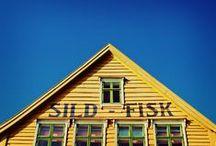 ✕ Scandinavian Style | Houses ✕