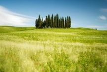 ✕ Val d'Orcia ✕