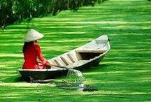 ✕ Vietnam ✕