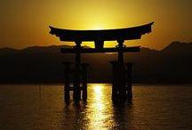 ✕ Japan Beauties ✕