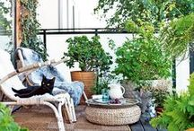 gardens & patios / size doesn't matter, but make use of the space you do have
