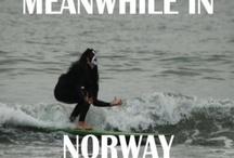 Ikke vær så norsk´a / Norwegian overload