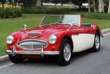 Magnificent Austin Healey