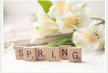Awakening / Spring time