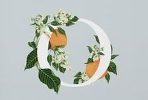 Type & Flowers / Inspiration for our Source & Mix Botanical Illustrations with Typography to Create Trendy Designs class on Skillshare: http://skl.sh/29nizHn & showcase of student work
