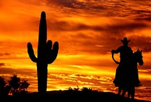 Cowboys / by Keri Smith