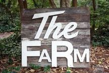 Farm Love / Farm Inspiration & Farm Living / by A Cultivated Nest