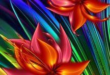 Glorious Colour