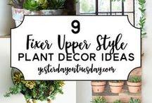 Indoor Gardening / Indoor gardening, indoor plants, house plants, DIY indoor garden, indoor gardening ideas