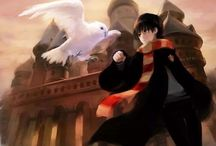 Harry Potter / The boy who lived!!!