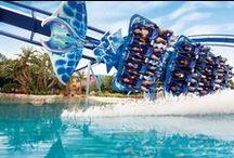 Orlando Holidays / Orlando Florida Holiday Tips