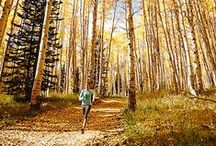 Leaf 'em in the Dust / All things autumn, because who doesn't love running through the leaves? / by Brooks Running